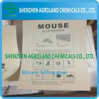 Paper Board Mouse Glue Boards Bio Degradable With Transparent Thick Liquid Manufactures