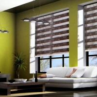 Motorized Sheer Roller Blinds Manufactures