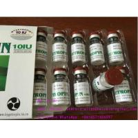 8iu/Vial  Human Growth  Hormone Supplements HGH Hygetropin for Muscle Bodybuilding Manufactures
