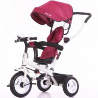 China factory purple color baby tricycle new models with push bar Tricycle bike for kids Manufactures