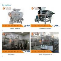 China Coustom Pomegranate Juice Production Line 5T / H ISO9001 Certificate on sale
