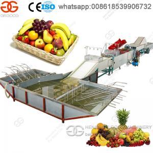 High Capacity Fruit Washing Waxing And Sorting Machine Manufactures