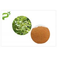 Improve Immune System Natural Food Supplements Siberian Ginseng Eleutherococcus Powder Manufactures