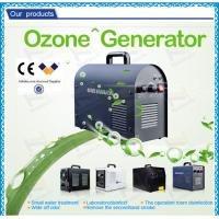 Professional Household Ultrapure Ozone Generator , car ozone machine / equipment Manufactures