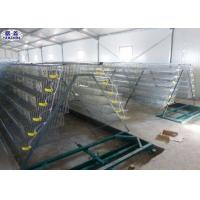6 Floors Steel Quail Laying Cage / Automatic Wire Quail Laying Cages Manufactures