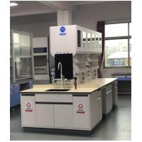 China Customized Chemical Laboratory Furniture With Stainless Steel Hinge on sale