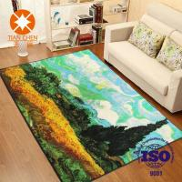China Colorful Polyester Waterproof Beautiful Home Rug 50 * 80mm / 60 * 90mm / 120 * 150mm wholesale