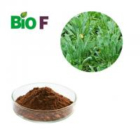 90% Indirubin Feed Additives In Poultry Nutrition Indigowoad Leaf Extract Manufactures