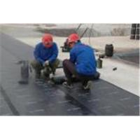 China App/sbs torched bitumen membrane on sale