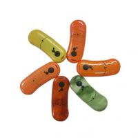 Orange, green, red, blue color bean Customized USB Flash Drive memory (MY-U185) Manufactures