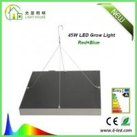 Energy Saving Waterproof LED Plant Grow Lights / Hydroponic LED Grow Lights 3W - 120W Manufactures