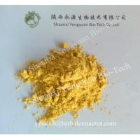 China Sea buckthorn powder, Seabuckthorn Extract Powder, Chinese manufacturer, high quality, Shaanxi Yongyuan Bio on sale