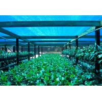 China Greenhouse Shade Net ,Agricultural Shade Cloth For Flower Farm wholesale