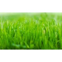 Full Lawn Service Austin Pest Control For Ticks / Fire Ants Manufactures