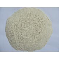 Dehydrated garlic powder Manufactures