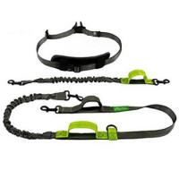 Factory Wholesale Dog Products Custom Elastic Bungee Pet Collar Leash Manufactures