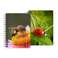 0.6mm PET Material 3D Lenticular Notebook For Office Stationery Manufactures