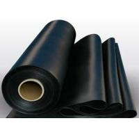 PE HDPE Geotextile Liner High Tensile Strength For Water Reservoir Manufactures