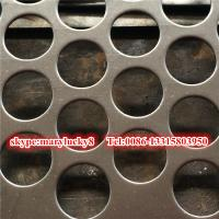 Galvanized Perforated metal sheet/galvanized plate perforated sheet Manufactures