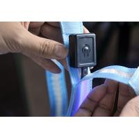 Yellow Plain Webbing LED Flashing Pet Leads Manufactures