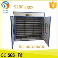 Fully automatic egg incubator hatchery 5280 capacity chicken egg incubator hatching machine egg incubator Manufactures