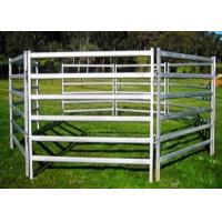 China Eco Friendly White Color Sheep Fence Panels 1000X2100mm By Square Tube on sale