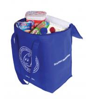 foldable cooler bag Manufactures