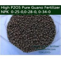 Granular 4 mm Seabird guano Fertilizer 25% Total Phosphorous , Bio Organic Fertilizer Manufactures
