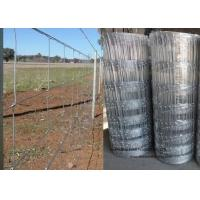 Cattle Farming Fence / Hot-Dipped Filed Wire Mesh Fence For Poultry Manufactures