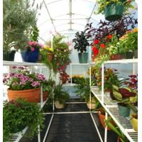 utility greenhouse staging Manufactures