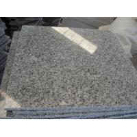China Popular and Cheapest Grey G603 Polished Granite Tiles and Slabs on sale