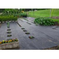 100% Polypropylene Agriculture Non Woven Fabric Weed Control Ground Cover Net Mesh Cloth Manufactures