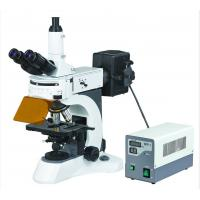 Excellent Upright Fluorescent Microscope with High Resolution Fluorescent Objectives Manufactures