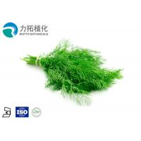 China Pure Organic Anthocyanin Extract Powder Cumin Seed Oil Against Colic , Dyspepsia on sale