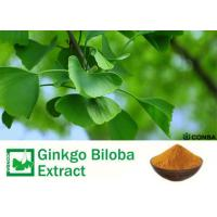 Quality Pure Natural Botanical Ginkgo Extracts With Advanced Extraction Technology for sale