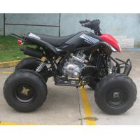 Large Size Off Road Motorcycle Air Shock Aluminium Exhaust Pipe With Big Tire Manufactures