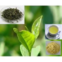 Instant Tea Powder Series Products Manufactures