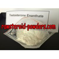 testosterone enanthate and arimidex