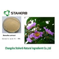 Banaba Pure Natural Plant Extract Powder Manufactures