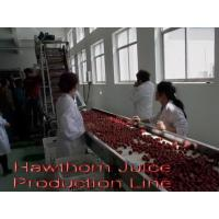 Buy cheap Hawthorn Juice Production Line from wholesalers