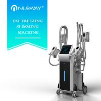 most effective body slimming 4 handles Cryolipolysis with Wind cooling + water cooling+ semiconductor cooling Manufactures