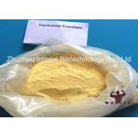 Effective Trenbolone Enanthate Injection , Parabolan Steroid Yellow Powder For Fat Loss Manufactures