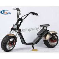 Popular Halley Electric Scooter 1000W 60V Fat Tyre Citycoco Manufactures
