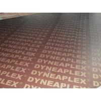 Dynea Phenolic Film Faced Plywood Manufactures