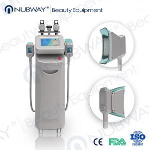 2 big Japan Copper Radiator cooling system -15~5℃ cryolipolysis body slimming machine Manufactures