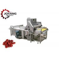 Multifunction Agricultural Food Washing Microwave Jujube Washing Equipment Manufactures