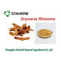 Drynaria Rhizome Extract Concentrated Plant Extract Rhizoma Drynariae Powder Manufactures