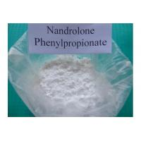 99% Assay Nandrolone Phenylpropionate , CAS 62-90-8 NPP Durabolin Steroid Powder Manufactures
