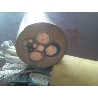 Copper/Tinned copper Rubber cable Manufactures