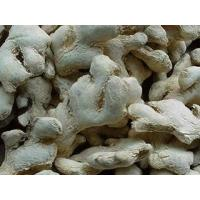 Dehydrated Ginger Manufactures